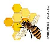 bee vector | Shutterstock .eps vector #10152517