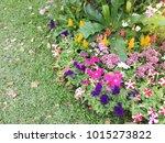 modern garden design   Shutterstock . vector #1015273822