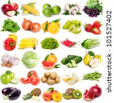 collection of fruits and... | Shutterstock . vector #101527402