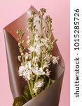bouquet of white flower bunches ... | Shutterstock . vector #1015285726