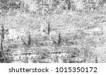 texture grunge. black and white ... | Shutterstock . vector #1015350172
