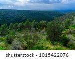 landscape of yehiam stream in... | Shutterstock . vector #1015422076