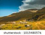 dartlo  tusheti  georgia | Shutterstock . vector #1015480576