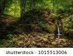 Waterfall In Carpathian...