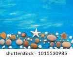 Set Sea Shell Decorative Frame...