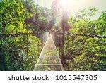 Hiking In Green Tropical Jungle ...