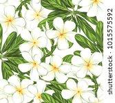 seamless pattern  background... | Shutterstock .eps vector #1015575592