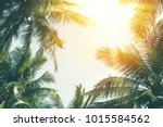 copy space of silhouette... | Shutterstock . vector #1015584562