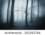 Tree In A Dark Forest