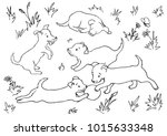 Stock vector vector coloring page with five puppies playing on the grass 1015633348