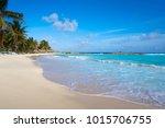 chen rio beach cozumel island... | Shutterstock . vector #1015706755