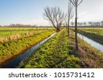 backlit image of a narrow...   Shutterstock . vector #1015731412