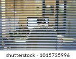 unrecognizable silhouette of... | Shutterstock . vector #1015735996