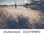 blurred nature lake and trees... | Shutterstock . vector #1015749892