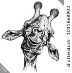 black and white engrave... | Shutterstock .eps vector #1015868902