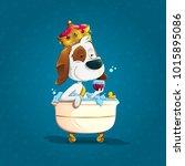 cute elegant dog bathing with...