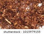 rolling cigarette tobacco...   Shutterstock . vector #1015979155