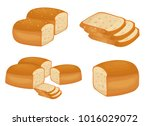 bread vector illustration | Shutterstock .eps vector #1016029072