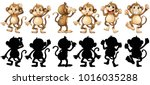 Monkeys And Its Silhouette In...