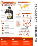 simple flat style infographics... | Shutterstock .eps vector #1016044762