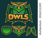 green nocturnal owl mascot...   Shutterstock .eps vector #1016111245