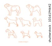 set icons dogs | Shutterstock .eps vector #1016194642