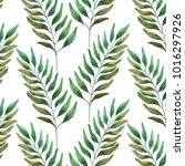 watercolor green branches | Shutterstock . vector #1016297926