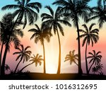 card with realistic palm trees... | Shutterstock .eps vector #1016312695