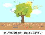 vector illustration of the... | Shutterstock .eps vector #1016323462