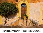 classic  common sicilian... | Shutterstock . vector #1016339956