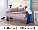 two young male movers in the... | Shutterstock . vector #1016363608