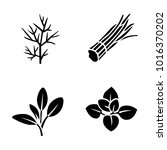 herbs   spices vector icons | Shutterstock .eps vector #1016370202