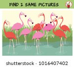 find two the identical... | Shutterstock .eps vector #1016407402