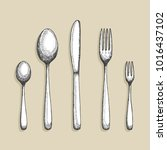 cutlery vector. a set of spoon... | Shutterstock .eps vector #1016437102