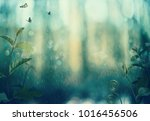 butterflies and plants in a...   Shutterstock . vector #1016456506