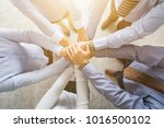 close up top view of young... | Shutterstock . vector #1016500102