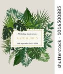 wedding invitation  background... | Shutterstock .eps vector #1016500885