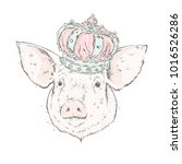 beautiful pig in the crown.... | Shutterstock .eps vector #1016526286