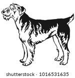 decorative portrait of standing ...   Shutterstock .eps vector #1016531635