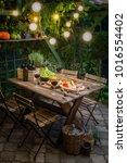 garden table with appetizers... | Shutterstock . vector #1016554402