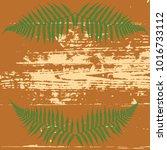frame of ferns on the...   Shutterstock .eps vector #1016733112