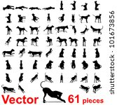 Stock vector vector concept or conceptual set group or collection of black dog silhouette isolated on white 101673856