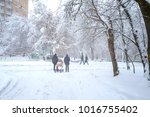snowfall on the streets of the... | Shutterstock . vector #1016755402