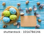 painted easter eggs in the nest ... | Shutterstock . vector #1016786146
