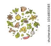 vector set design templates... | Shutterstock .eps vector #1016803585