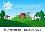 vector milk illustration with... | Shutterstock .eps vector #1016807326
