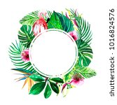 round frame of tropical green... | Shutterstock . vector #1016824576
