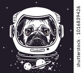 Vector Image Of A Pug In An...