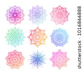 set of round gradient mandala... | Shutterstock .eps vector #1016866888