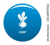 turnip icon vector blue circle... | Shutterstock .eps vector #1016895562